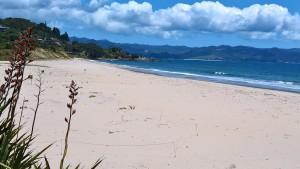 Coromandel 2 Beach